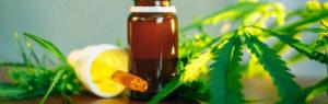 CBD et huiles essentielles